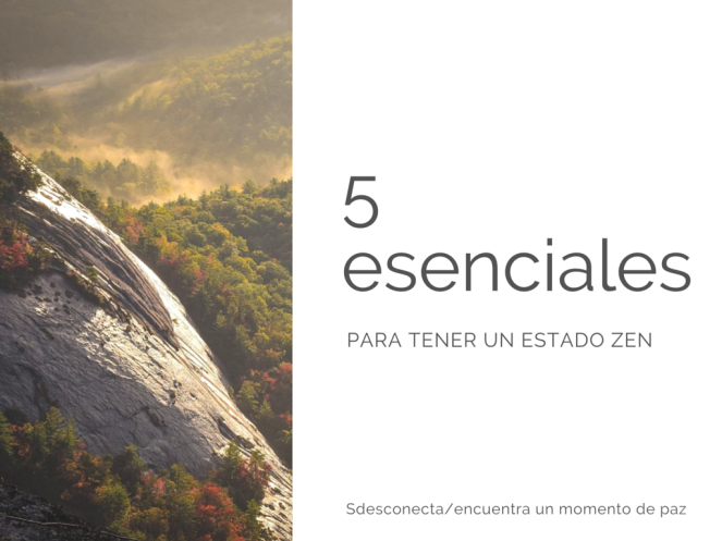 5 esenciales.png